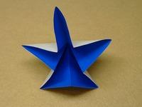 五角形のお花2