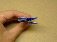 五角形のお花6