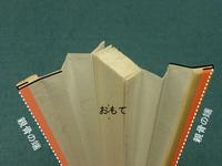 扇子型紙02