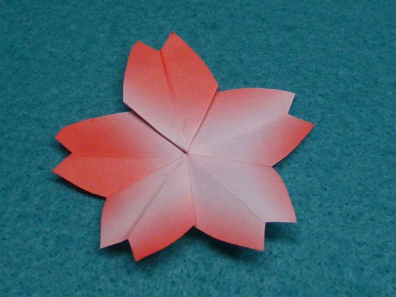すべての折り紙 星の作り方 折り紙 : 五角形折り紙で桜・梅・朝顔 ...